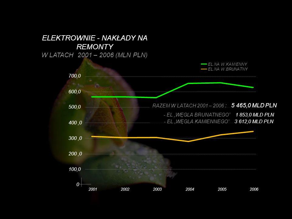 ELEKTROWNIE - NAKŁADY NA REMONTY W LATACH 2001 – 2006 (MLN PLN) 100,0 200,0 300,0 400,0 500,0 600,0 700,0 EL.NA W.KAMIENNY EL.NA W.BRUNATNY 0 20012002