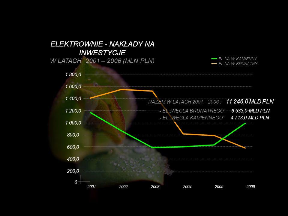 0 200120022003200420052006 1 800,0 ELEKTROWNIE - NAKŁADY NA INWESTYCJE W LATACH 2001 – 2006 (MLN PLN) 200,0 400,0 600,0 800,0 1 000,0 1 200,0 1 400,0