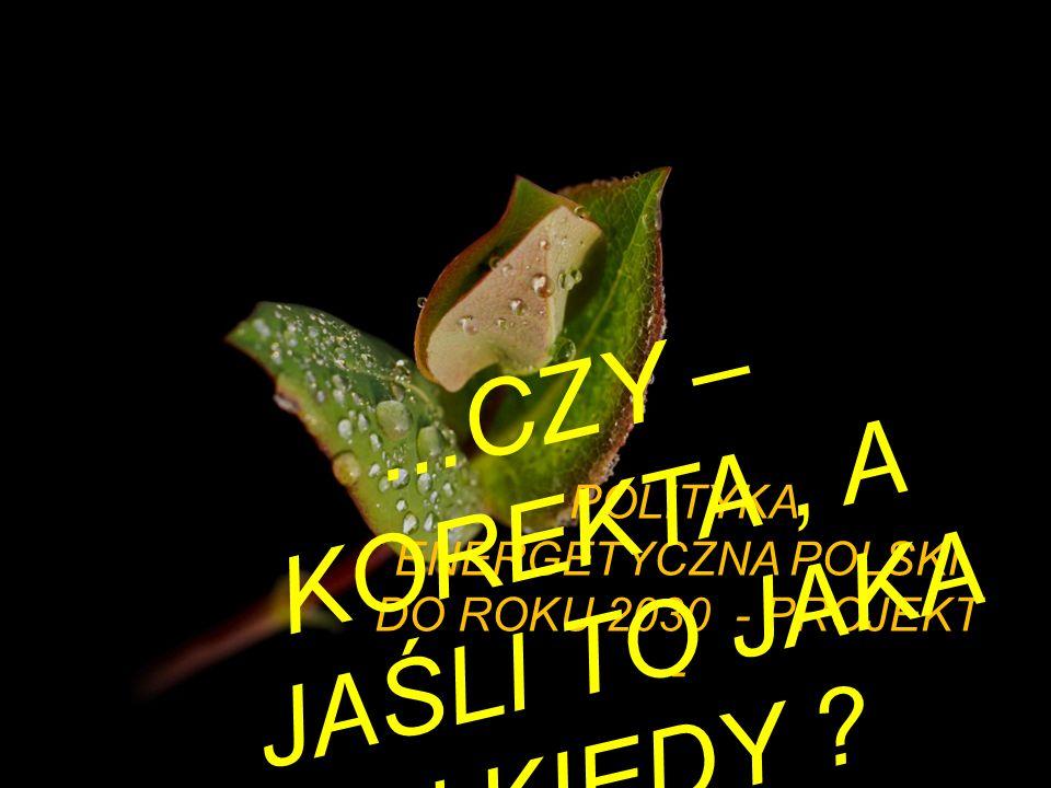 POLITYKA ENERGETYCZNA POLSKI DO ROKU 2030 - PROJEKT -... C Z Y – K O R E K T A, A J A Ś L I T O J A K A i K I E D Y ?