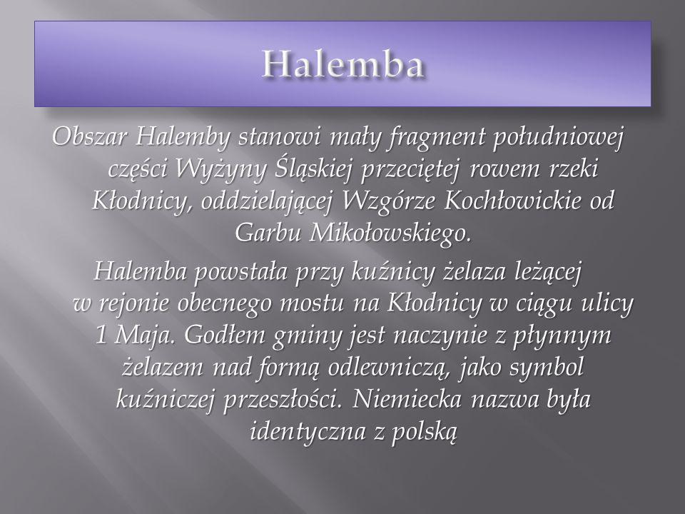 Obszar Halemby stanowi mały fragment południowej części Wyżyny Śląskiej przeciętej rowem rzeki Kłodnicy, oddzielającej Wzgórze Kochłowickie od Garbu M