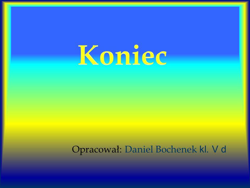 Opracował: Daniel Bochenek kl. V d