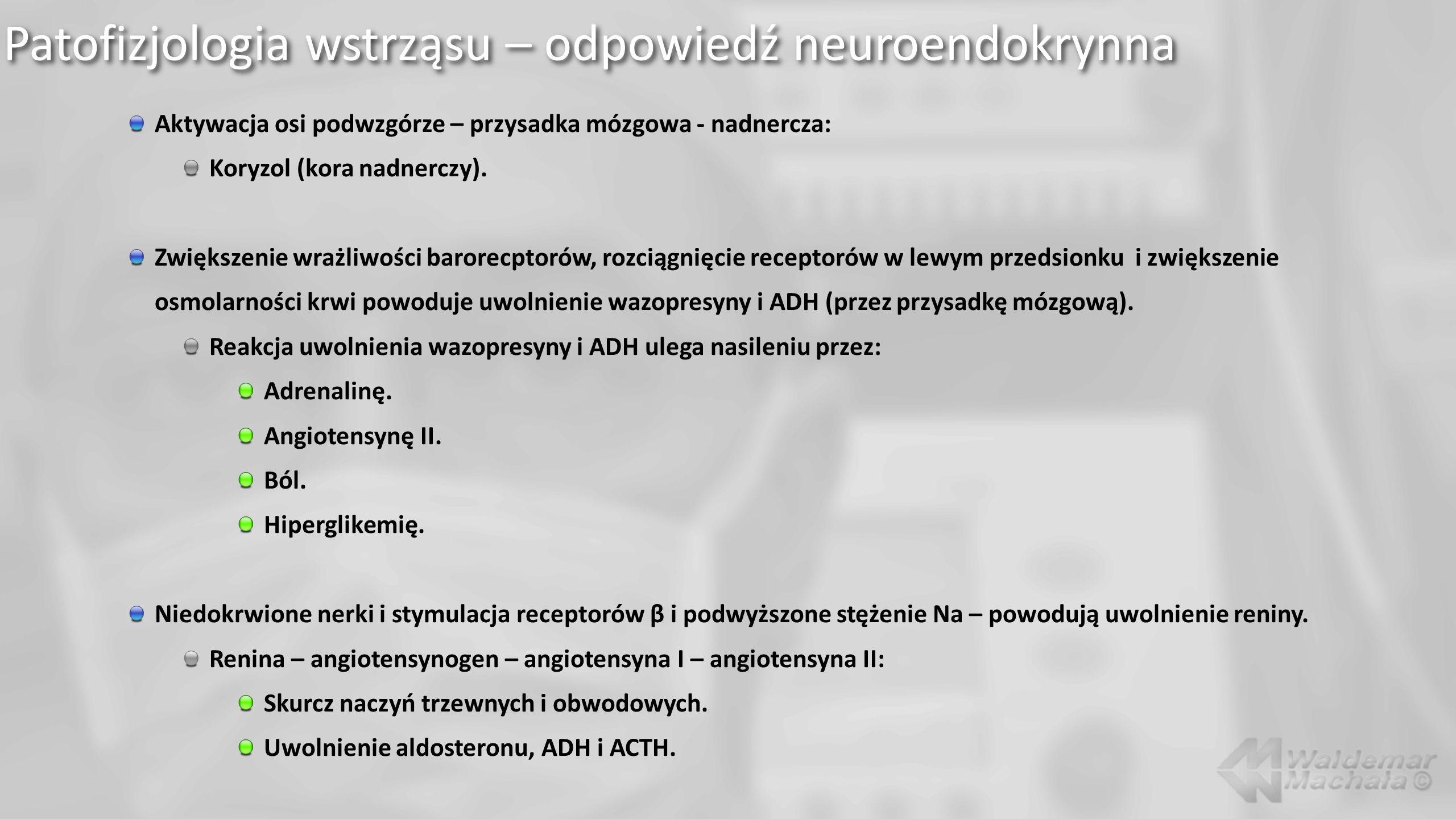 Patofizjologia wstrząsu – odpowiedź neuroendokrynna Aktywacja osi podwzgórze – przysadka mózgowa - nadnercza: Koryzol (kora nadnerczy).