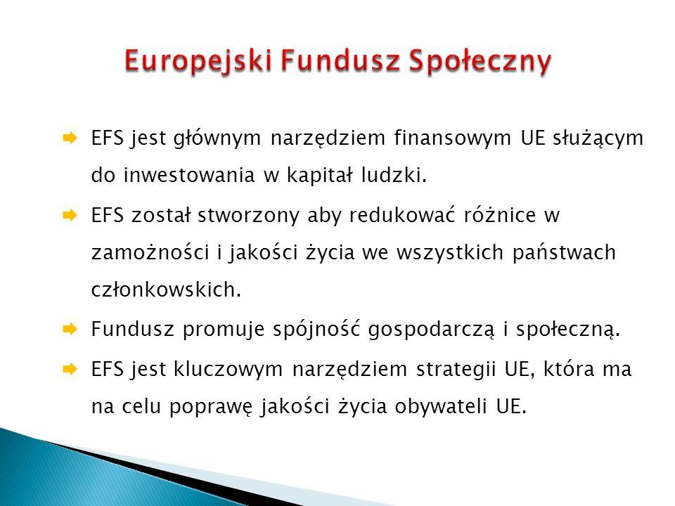 EFS jest głównym narzędziem finansowym UE służącym do inwestowania w kapitał ludzki.