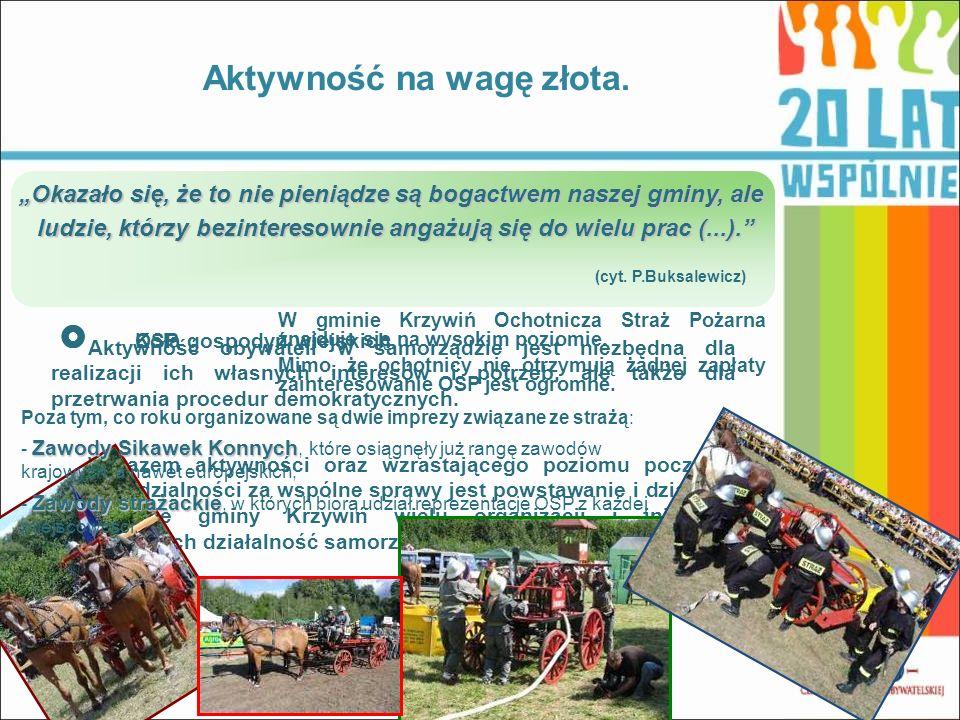 Aktywność na wagę złota. Okazało się, że to nie pieniądze są bogactwem naszej gminy, ale ludzie, którzy bezinteresownie angażują się do wielu prac (..
