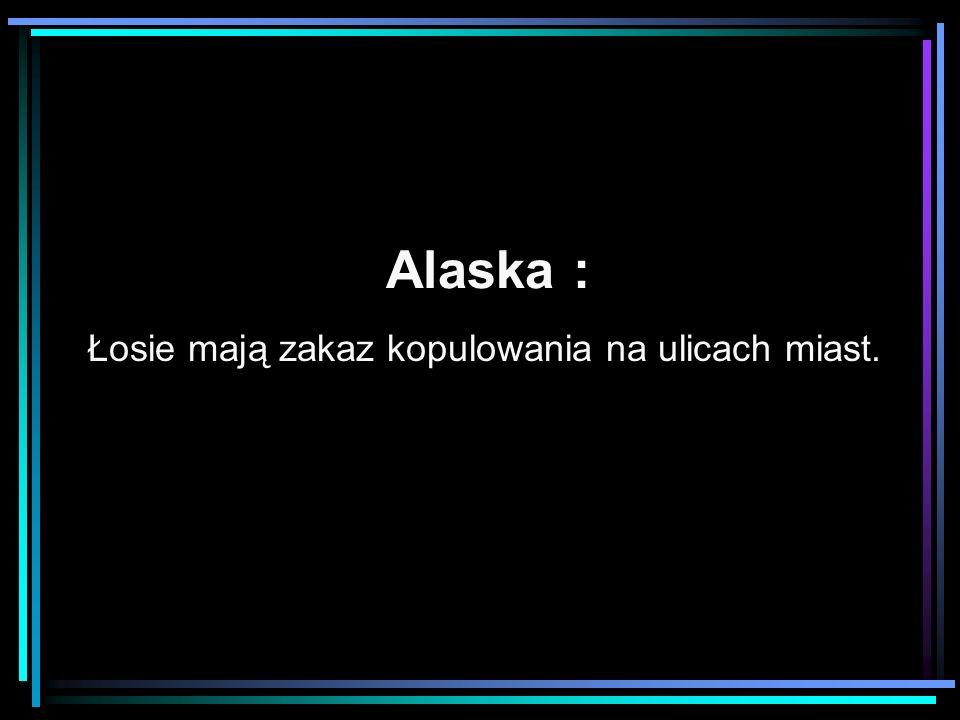 Alaska : Łosie mają zakaz kopulowania na ulicach miast.