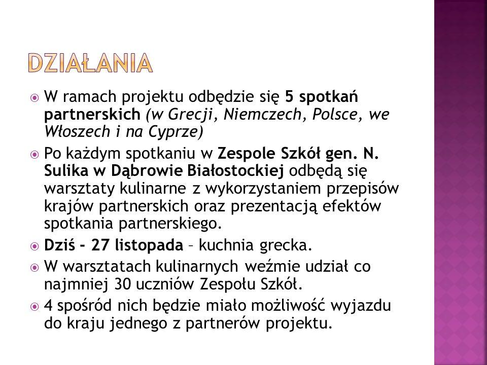W ramach projektu odbędzie się 5 spotkań partnerskich (w Grecji, Niemczech, Polsce, we Włoszech i na Cyprze) Po każdym spotkaniu w Zespole Szkół gen.