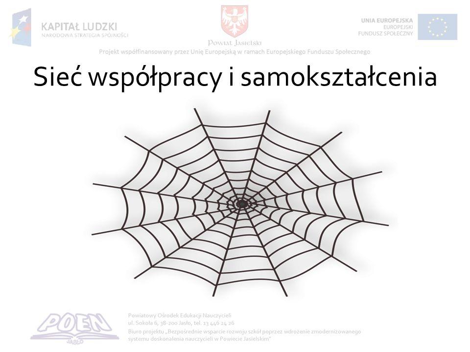 Sieć współpracy i samokształcenia