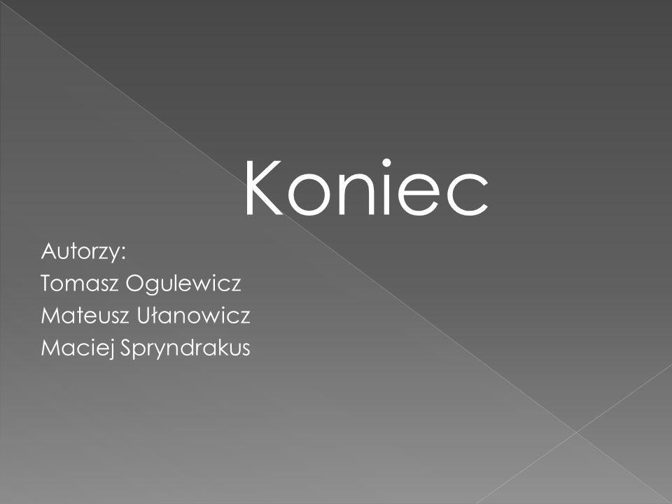 Koniec Autorzy: Tomasz Ogulewicz Mateusz Ułanowicz Maciej Spryndrakus
