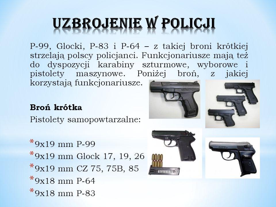 P-99, Glocki, P-83 i P-64 – z takiej broni krótkiej strzelają polscy policjanci. Funkcjonariusze mają też do dyspozycji karabiny szturmowe, wyborowe i