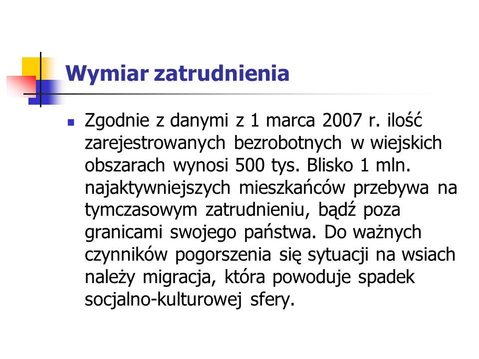 Wymiar zatrudnienia Zgodnie z danymi z 1 marca 2007 r.