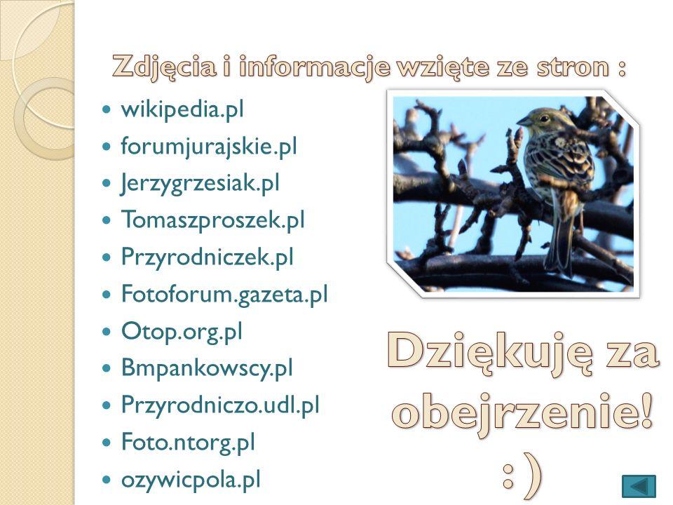 wikipedia.pl forumjurajskie.pl Jerzygrzesiak.pl Tomaszproszek.pl Przyrodniczek.pl Fotoforum.gazeta.pl Otop.org.pl Bmpankowscy.pl Przyrodniczo.udl.pl F