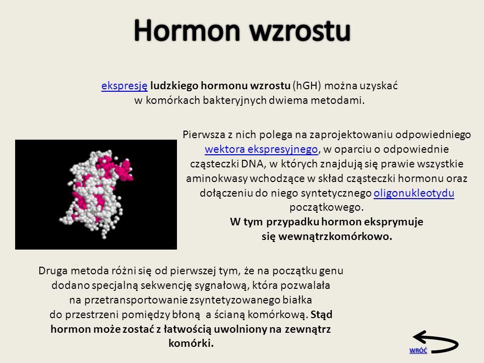 ekspresjęekspresję ludzkiego hormonu wzrostu (hGH) można uzyskać w komórkach bakteryjnych dwiema metodami.