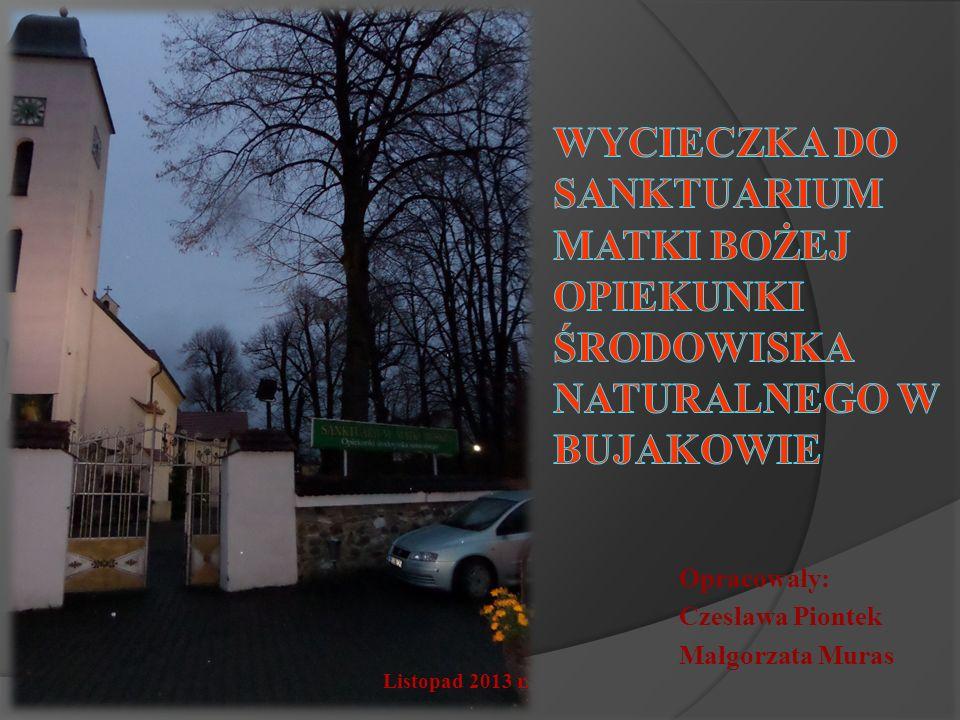 Opracowały: Czesława Piontek Małgorzata Muras Listopad 2013 r.