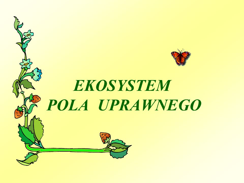 Środowisko nieożywione i żyjące w nim organizmy tworzą EKOSYSTEM.