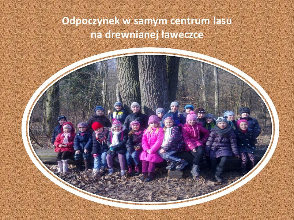Odpoczynek w samym centrum lasu na drewnianej ławeczce