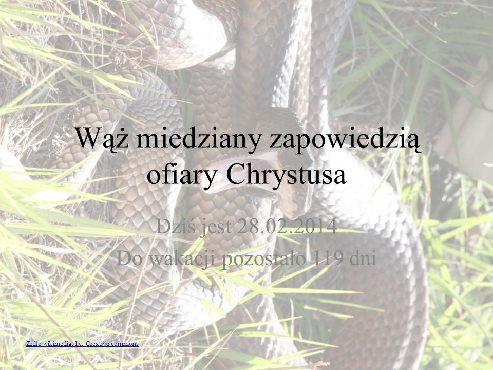 Wąż miedziany zapowiedzią ofiary Chrystusa Dziś jest 28.02.2014 Do wakacji pozostało 119 dni Źrdło wikimedia, lic. Creative commons