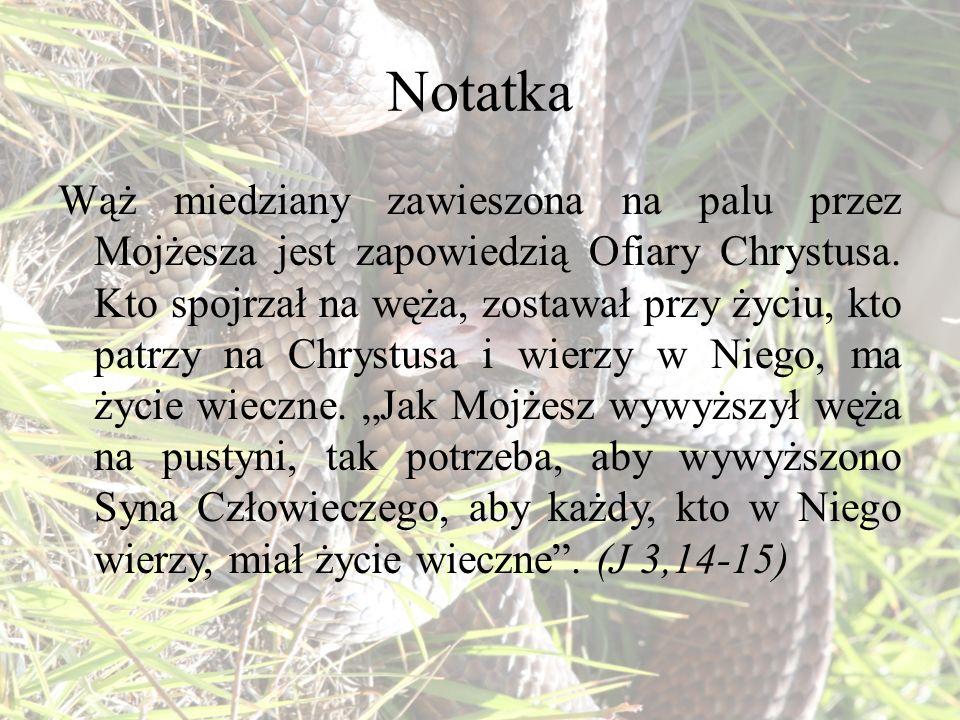 Notatka Wąż miedziany zawieszona na palu przez Mojżesza jest zapowiedzią Ofiary Chrystusa. Kto spojrzał na węża, zostawał przy życiu, kto patrzy na Ch
