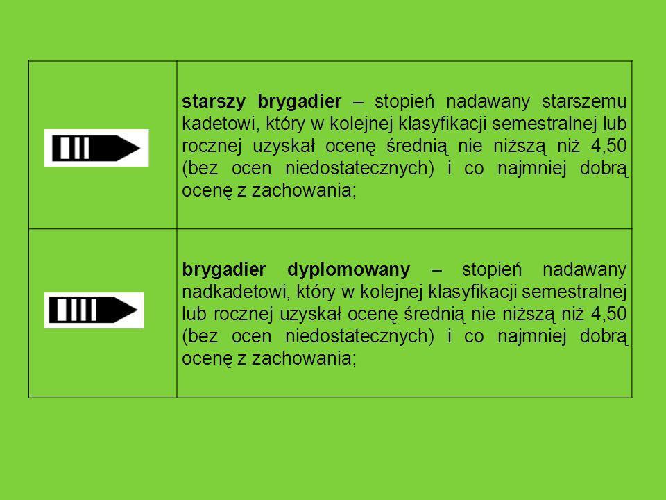 Granicę RP ochraniają oddziały Straży Granicznej na następujących odcinkach granicy: Warmińsko – Mazurski (Kętrzyn) – 198,70 km; Podlaski (Białystok) – 342,26 km; Nadbużański (Chełm) – 457,64 km; Bieszczadzki (Przemyśl) – 370,30 km; Karpacki (Nowy Sącz) – 399,19 km; Śląski (Racibórz) – 319,22 km; Sudecki (Kłodzko) – 263,69 km; Łużycki (Lubań) – 280,80 km; Lubuski (Krosno Odrzańskie) – 208,65 km; Pomorski (Szczecin) – 154,48 km; Morski (Gdańsk) – 454,54 km.