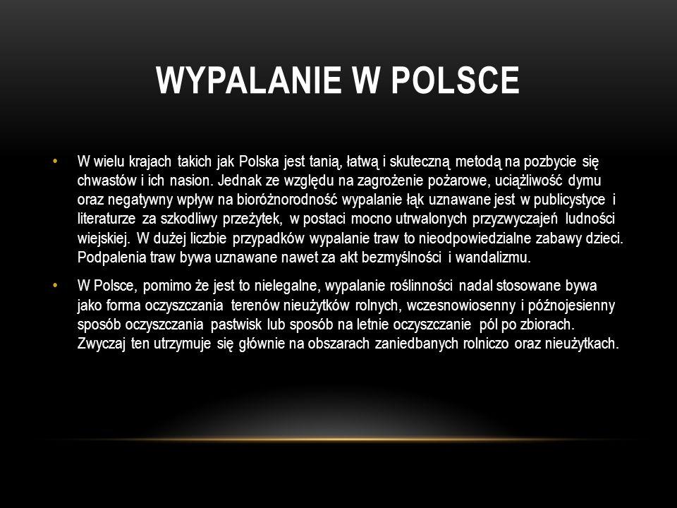 WYPALANIE W POLSCE W wielu krajach takich jak Polska jest tanią, łatwą i skuteczną metodą na pozbycie się chwastów i ich nasion. Jednak ze względu na
