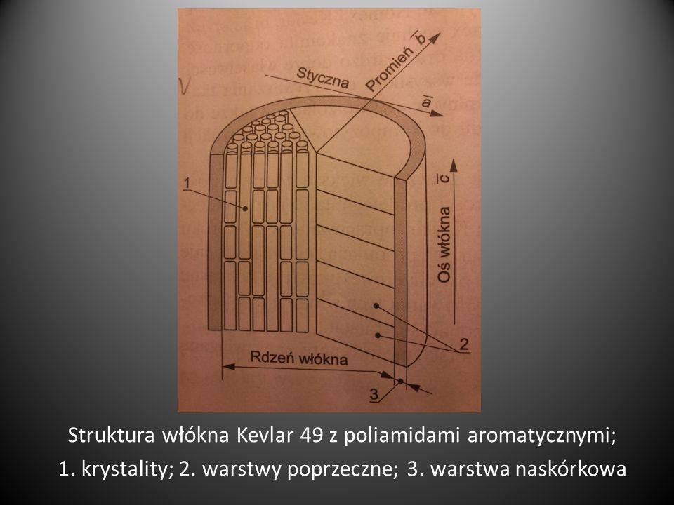 Schematyczna budowa celulozowych włókien roślinnych