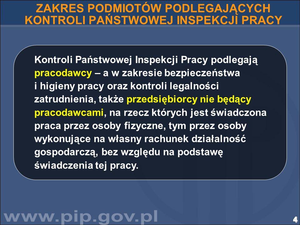 25252525252525252525252525252525252525252525252525252525 Tematyka spraw kierowanych przez stronę polską w 2010 r.