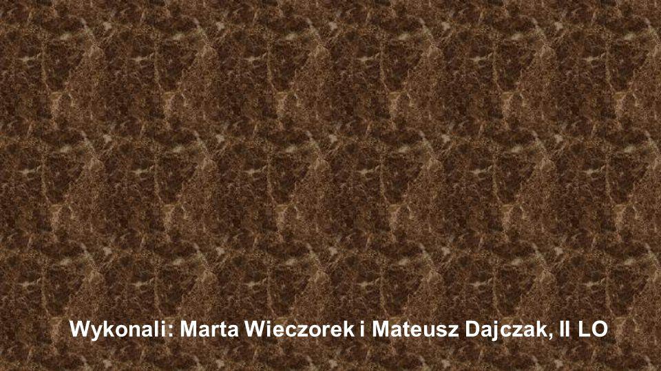 Wykonali: Marta Wieczorek i Mateusz Dajczak, II LO