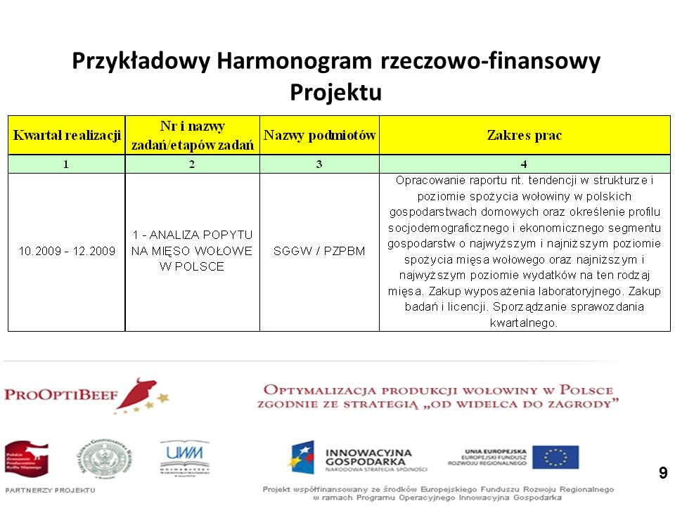 9 Przykładowy Harmonogram rzeczowo-finansowy Projektu