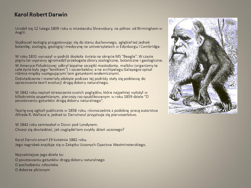 Karol Robert Darwin Urodził się 12 lutego 1809 roku w miasteczku Shrewsbury, na północ od Birmingham w Anglii. Studiował teologię przygotowując się do
