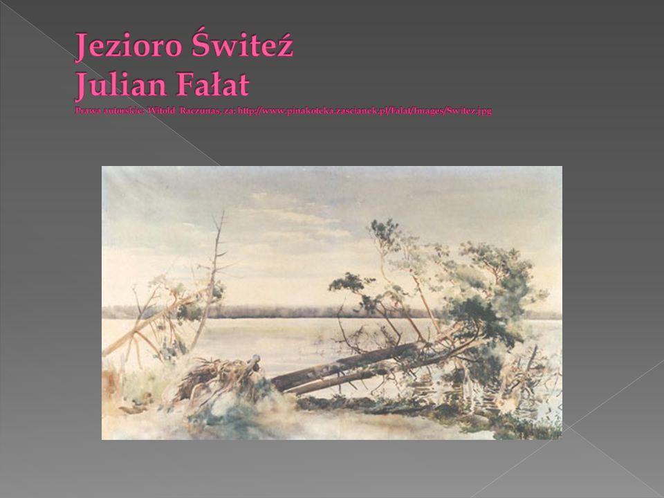 Przedstawicielem konceptualizmu jest Roman Opałka, który początkowo tworzył kwasoryty (m.in.