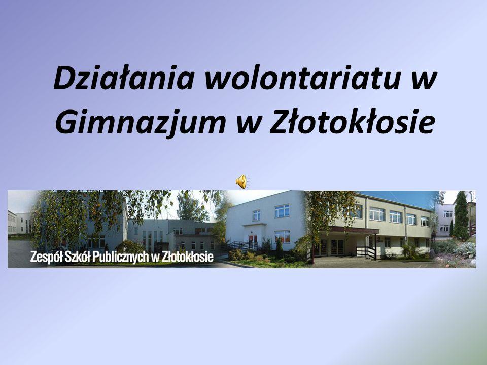 Działania wolontariatu w Gimnazjum w Złotokłosie