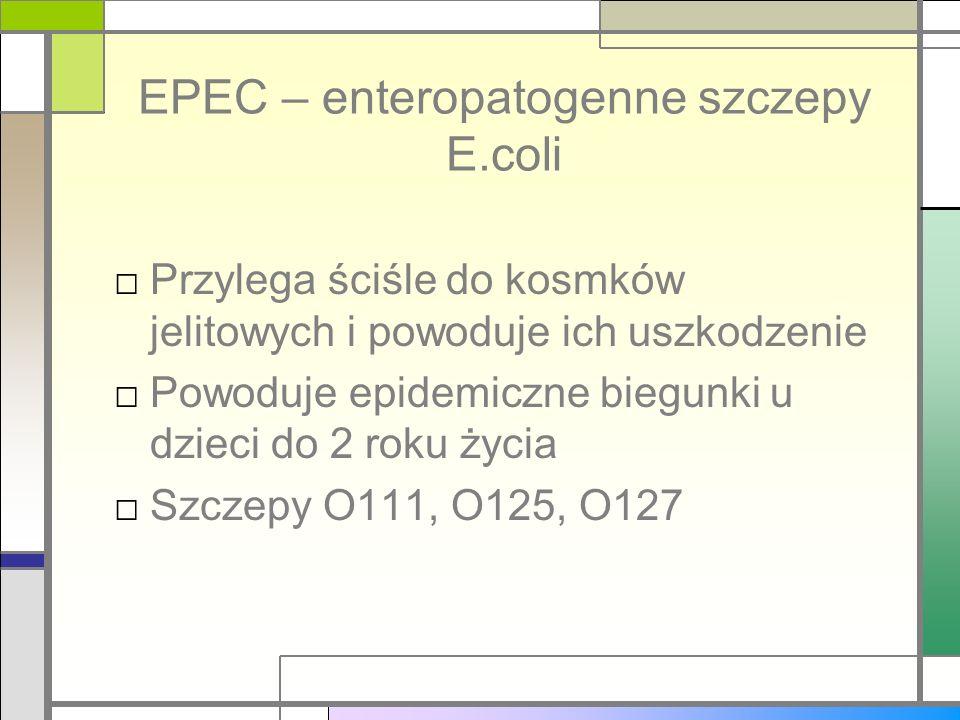 EPEC – enteropatogenne szczepy E.coli Przylega ściśle do kosmków jelitowych i powoduje ich uszkodzenie Powoduje epidemiczne biegunki u dzieci do 2 rok