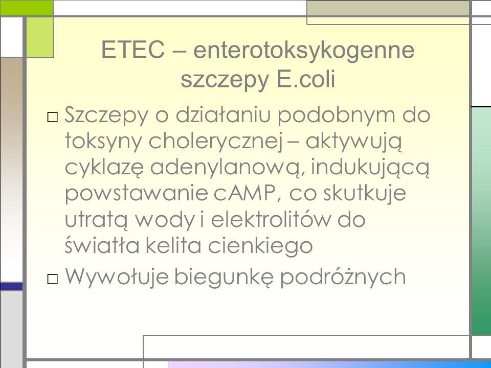 ETEC – enterotoksykogenne szczepy E.coli Szczepy o działaniu podobnym do toksyny cholerycznej – aktywują cyklazę adenylanową, indukującą powstawanie c