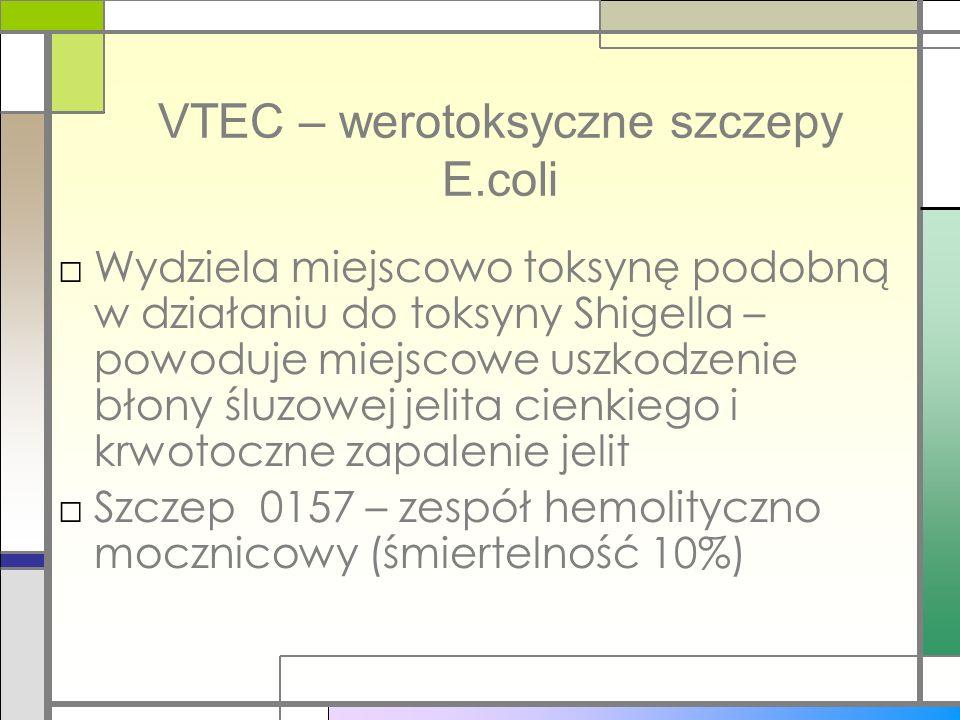 VTEC – werotoksyczne szczepy E.coli Wydziela miejscowo toksynę podobną w działaniu do toksyny Shigella – powoduje miejscowe uszkodzenie błony śluzowej