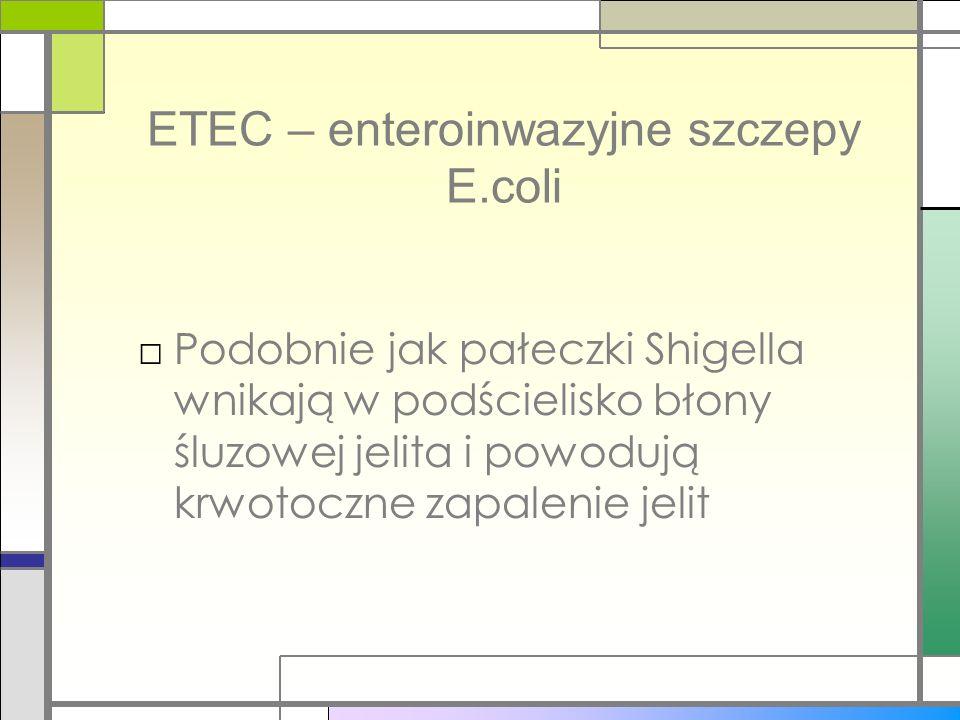 ETEC – enteroinwazyjne szczepy E.coli Podobnie jak pałeczki Shigella wnikają w podścielisko błony śluzowej jelita i powodują krwotoczne zapalenie jeli