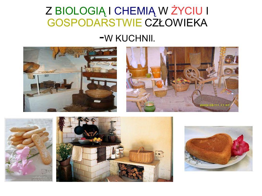 Z BIOLOGIĄ I CHEMIĄ W ŻYCIU I GOSPODARSTWIE CZŁOWIEKA - W KUCHNII.