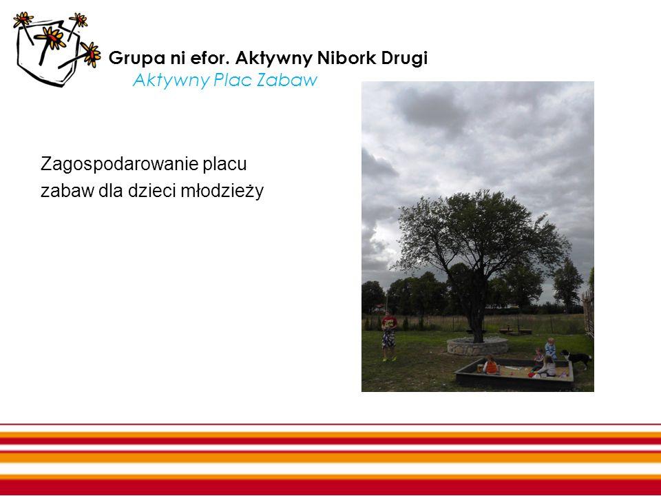 Grupa ni efor. Aktywny Nibork Drugi Aktywny Plac Zabaw Zagospodarowanie placu zabaw dla dzieci młodzieży