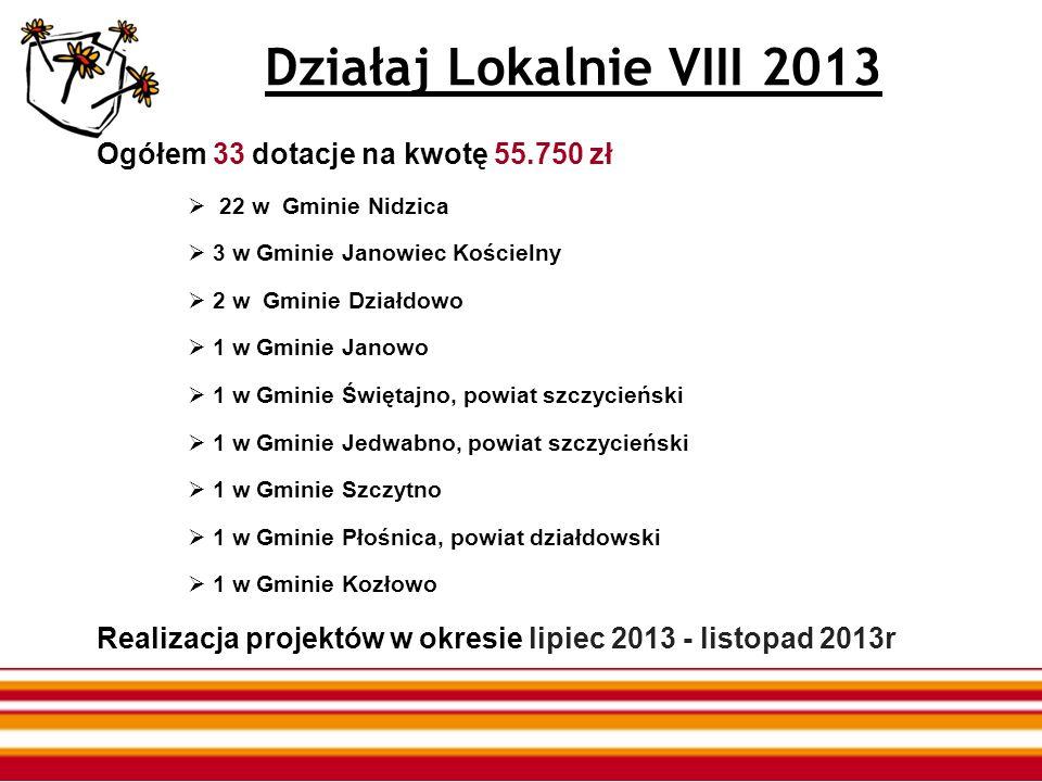 Działaj Lokalnie VIII 2013 Ogółem 33 dotacje na kwotę 55.750 zł 22 w Gminie Nidzica 3 w Gminie Janowiec Kościelny 2 w Gminie Działdowo 1 w Gminie Jano