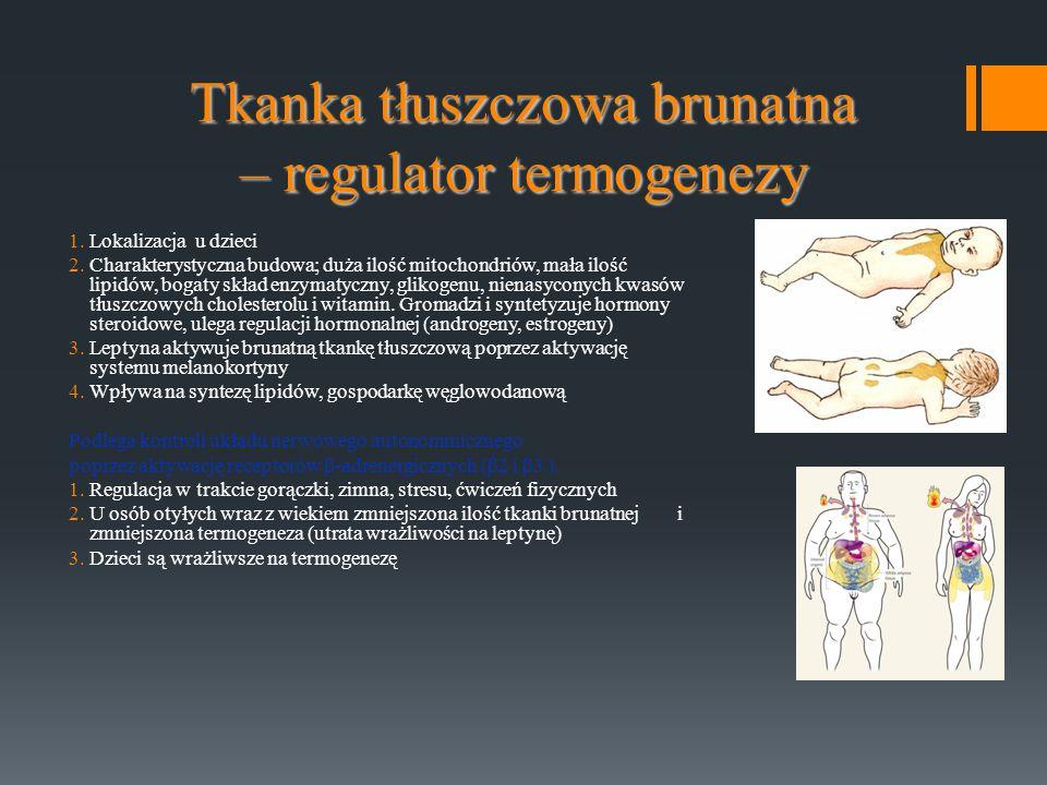 Tkanka tłuszczowa brunatna – regulator termogenezy 1.Lokalizacja u dzieci 2.Charakterystyczna budowa; duża ilość mitochondriów, mała ilość lipidów, bo