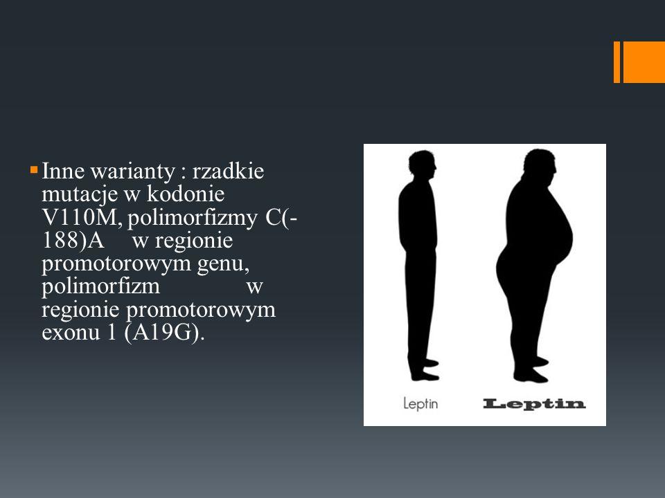 Inne warianty : rzadkie mutacje w kodonie V110M, polimorfizmy C(- 188)A w regionie promotorowym genu, polimorfizm w regionie promotorowym exonu 1 (A19