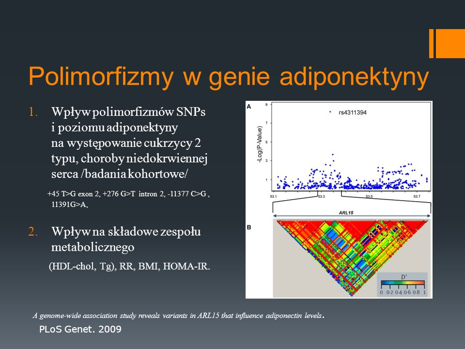 Polimorfizmy w genie adiponektyny 1.Wpływ polimorfizmów SNPs i poziomu adiponektyny na występowanie cukrzycy 2 typu, choroby niedokrwiennej serca /bad