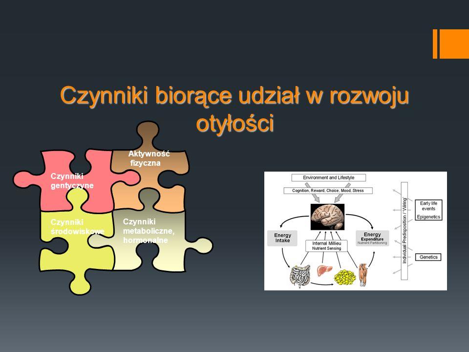 Czynniki biorące udział w rozwoju otyłości Czynniki metaboliczne, hormonalne Czynniki środowiskowe Czynniki gentyczyne Aktywność fizyczna