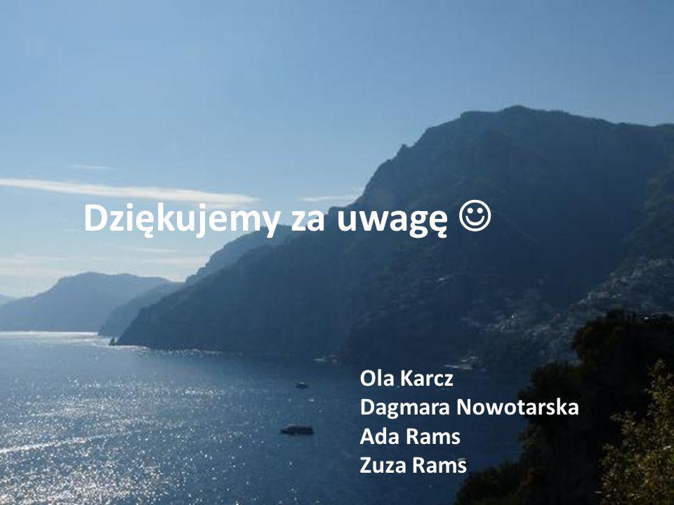 Dziękujemy za uwagę Ola Karcz Dagmara Nowotarska Ada Rams Zuza Rams