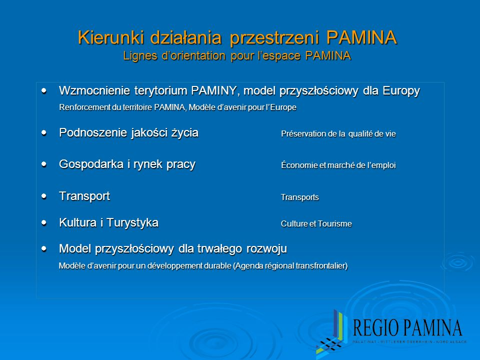 Kierunki działania przestrzeni PAMINA Lignes dorientation pour lespace PAMINA Wzmocnienie terytorium PAMINY, model przyszłościowy dla Europy Wzmocnien