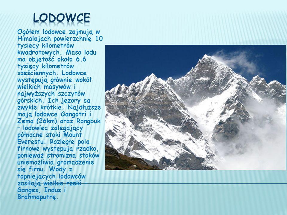 Ogółem lodowce zajmują w Himalajach powierzchnię 10 tysięcy kilometrów kwadratowych.