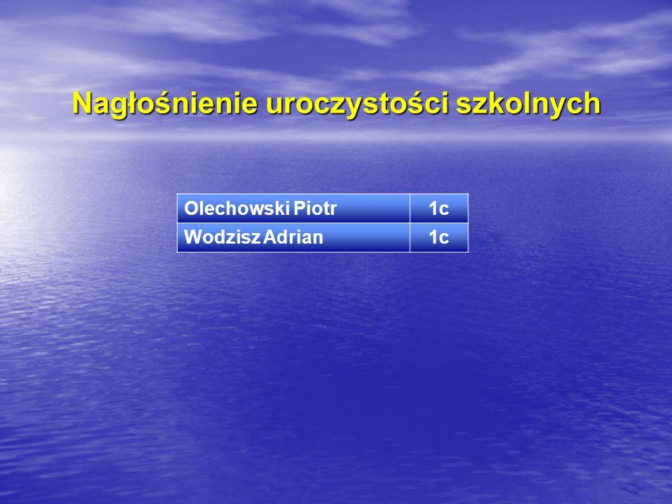 Nagłośnienie uroczystości szkolnych Olechowski Piotr1c Wodzisz Adrian1c
