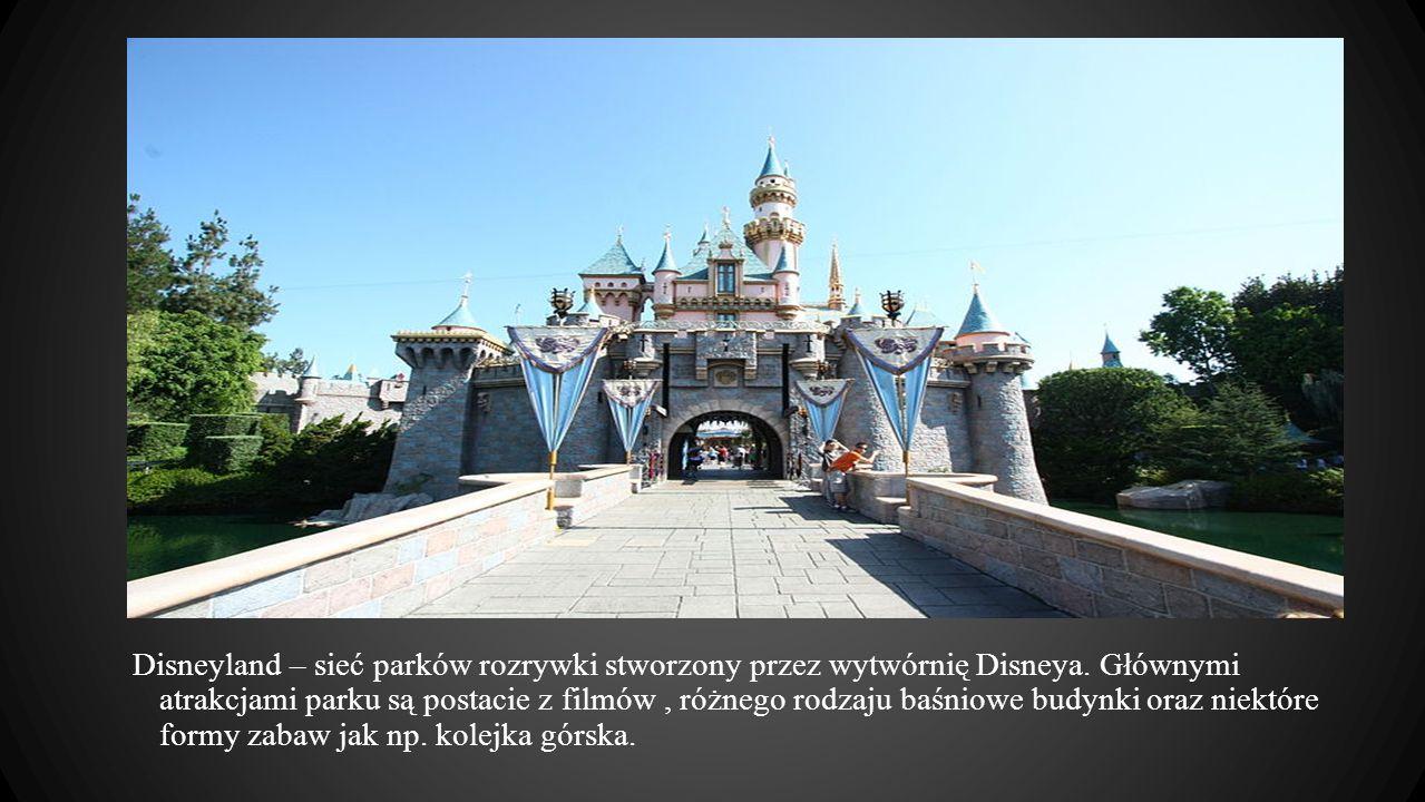 Disneyland – sieć parków rozrywki stworzony przez wytwórnię Disneya. Głównymi atrakcjami parku są postacie z filmów, różnego rodzaju baśniowe budynki