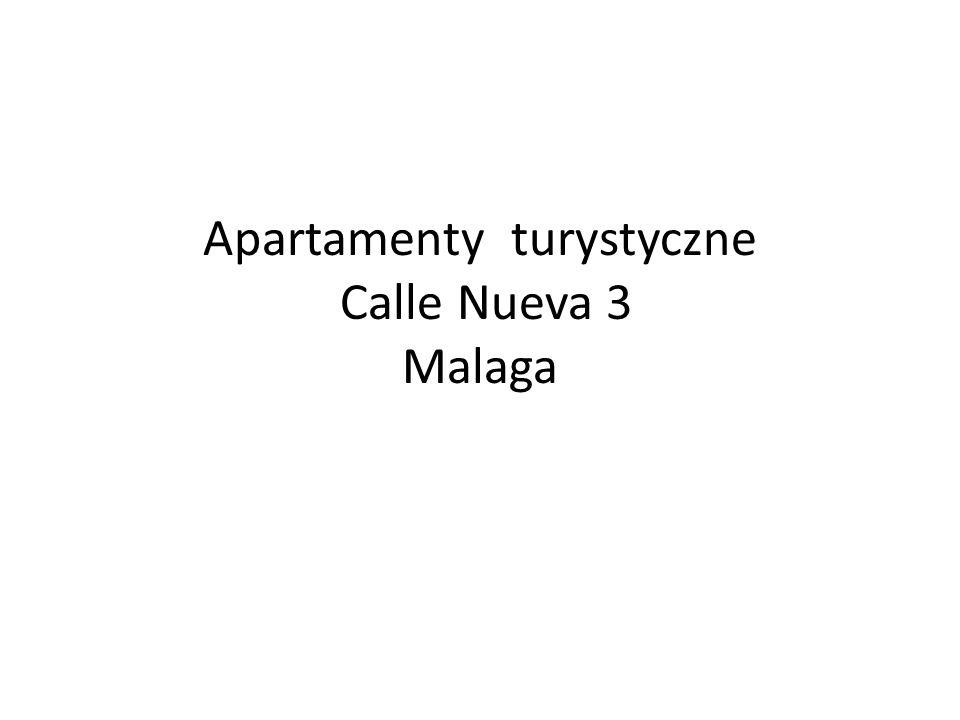 Inwestycja zrealizowana i prowadzona przez firmę z Madrytu w Maladze wystepujaca pod nazwą NuevaTres FullCityLiving.