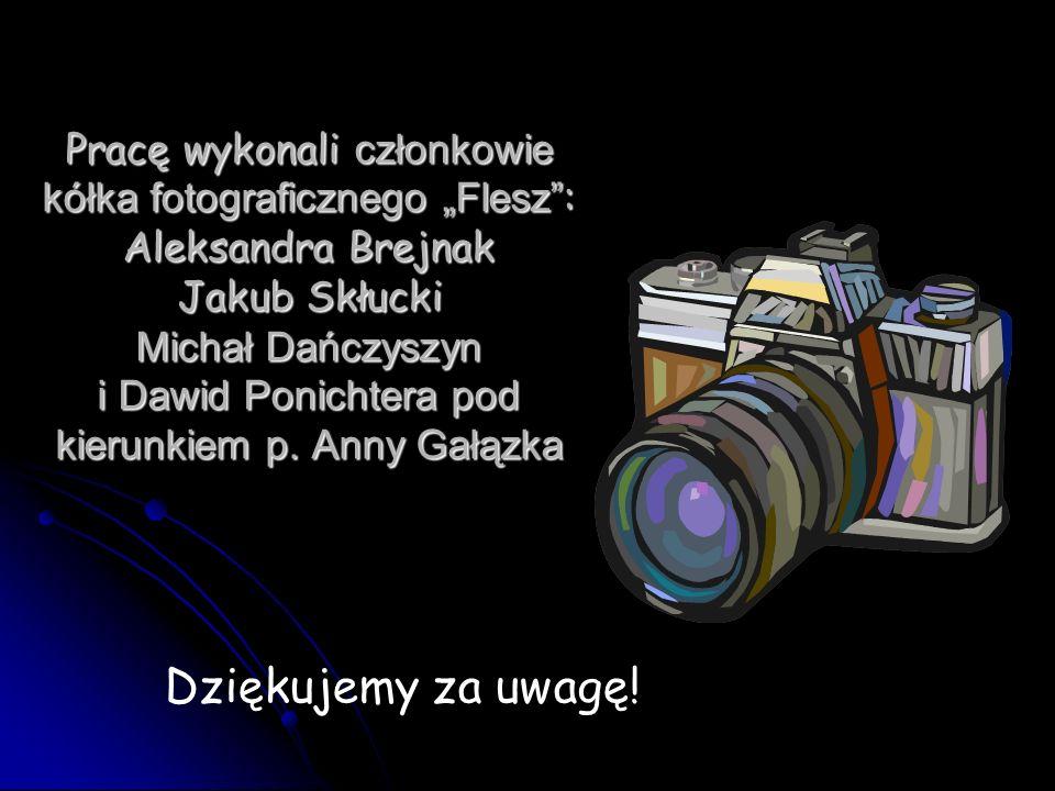 Pracę wykonali członkowie kółka fotograficznego Flesz : Aleksandra Brejnak Jakub Skłucki Michał Dańczyszyn i Dawid Ponichtera pod kierunkiem p. Anny G