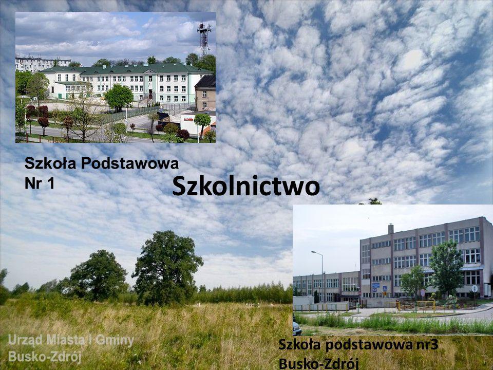 Szkolnictwo Szkoła podstawowa nr3 Busko-Zdrój Szkoła Podstawowa Nr 1
