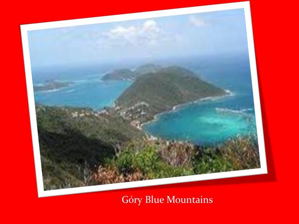 Miejsca które warto odwiedzić: -Port Royal Port Royal stał się inspiracją do wielu projektów, np.